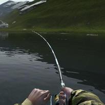 Gry Łowienie ryb