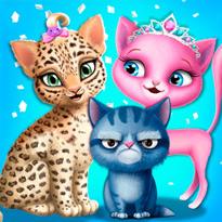 Salon piękności dla kotów