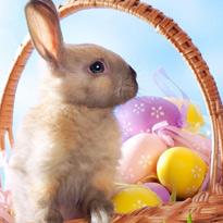 Puzzle na Wielkanoc