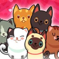 Bąbelkowe kociaki